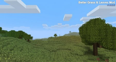 Better Grass and Leaves 1.6.4