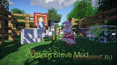 Мод Custom Steve 1.6.4/1.7.2/1.7.10