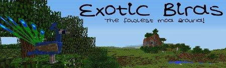 Exotic Birds — мод на птиц в Minecraft 1.12.2-1.7.10