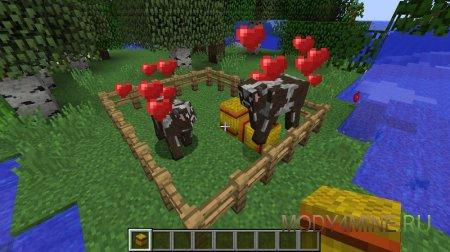 Влюбленные в игрока коровы