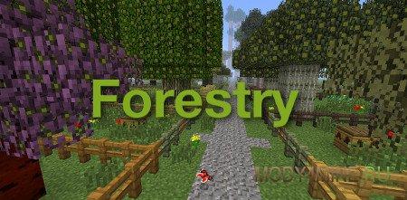Forestry — мод на пчел, автофермы и деревья в Minecraft