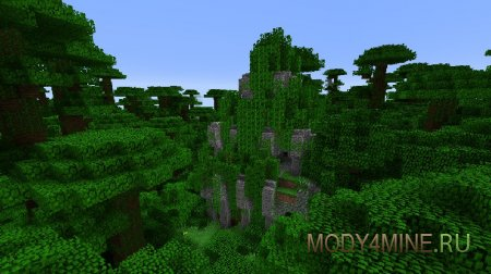 В джунглях
