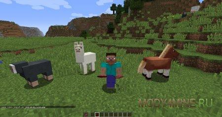 Питательные животные