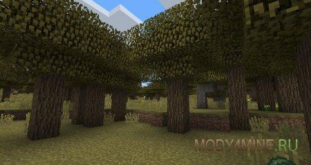 Выращивает лес