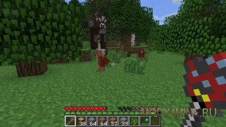 Тащит корову