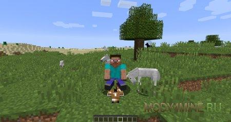 Верхом на любимой лошади по кличе «Блинчик»