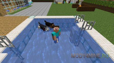 Совместный заплыв в бассейне
