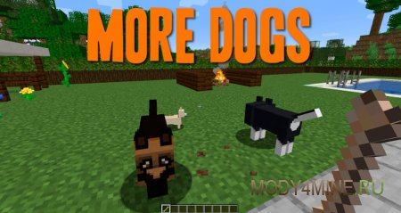 More Dogs – собаки в Minecraft 1.14.4