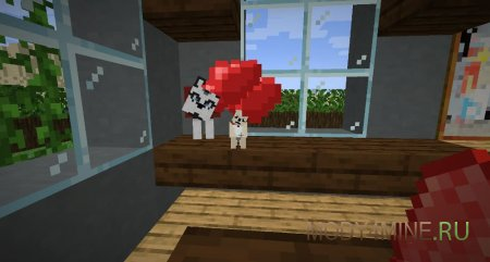 Собачья любовь