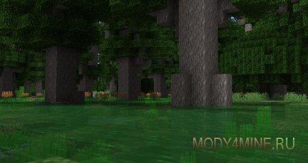 Рогоз на кипарисовых болотах