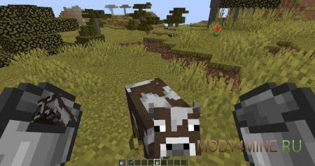 Корова ждет своей очереди