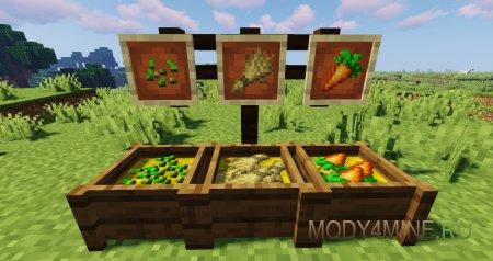 Семена для птиц, пшеница для коров и морковь для свиней